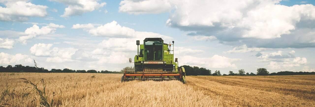 Landwirtschaft: Auseinandersetzung der Erbengemeinschaft